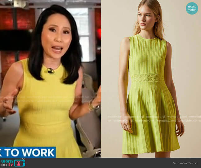Balieey Pleated Mini Dress by Ted Baker worn by Vicky Nguyen  on Today