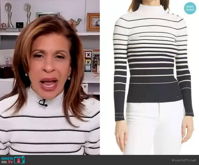 Wanada Stripe Mock Neck Sweater by Ted Baker worn by Hoda Kotb  on Today