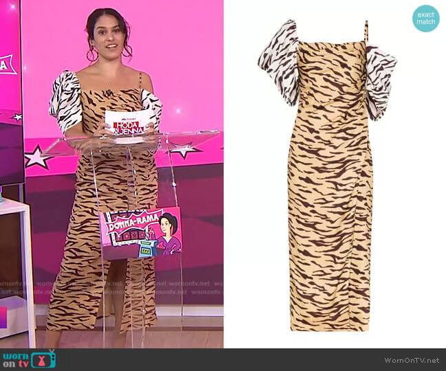 Amelia Off-Shoulder Tiger Print Dress by Rejina Pyo worn by Donna Farizan  on Today