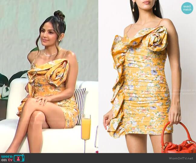 Floral Print Ruffled Mini Dress by Magda Butrym worn by Erin Lim  on E! News