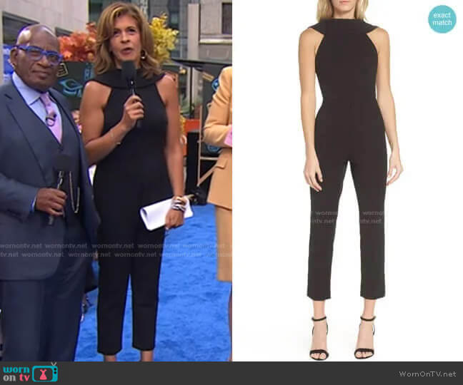 Knit Crepe Roll Neck Jumpsuit by Adrianna Papell worn by Hoda Kotb  on Today