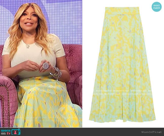 Tonnah floral-print georgette maxi skirt by Diane Von Furstenberg worn by Wendy Williams  on The Wendy Williams Show