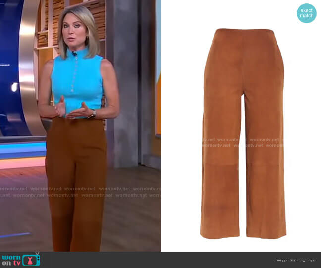 Suede Culottes by Vince worn by Amy Robach  on Good Morning America