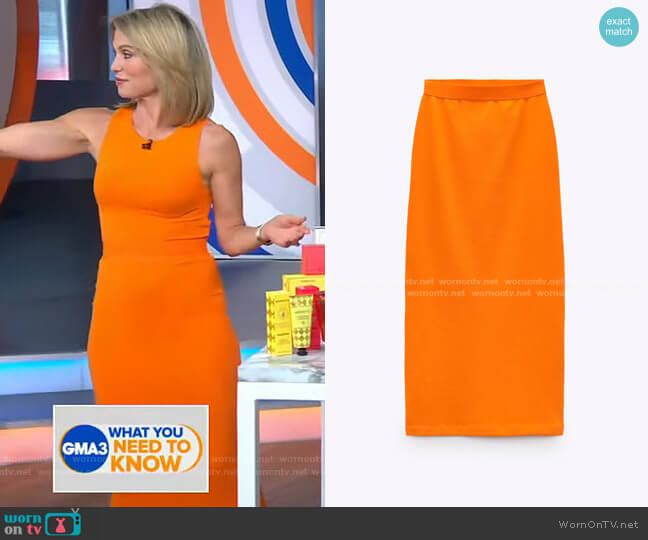 Fitted Skirt by Zara worn by Amy Robach  on Good Morning America