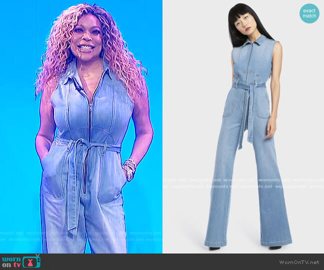Gorgeous Sexy 70s Sleeveless Jumpsuit by Alice + Olivia worn by Wendy Williams  on The Wendy Williams Show