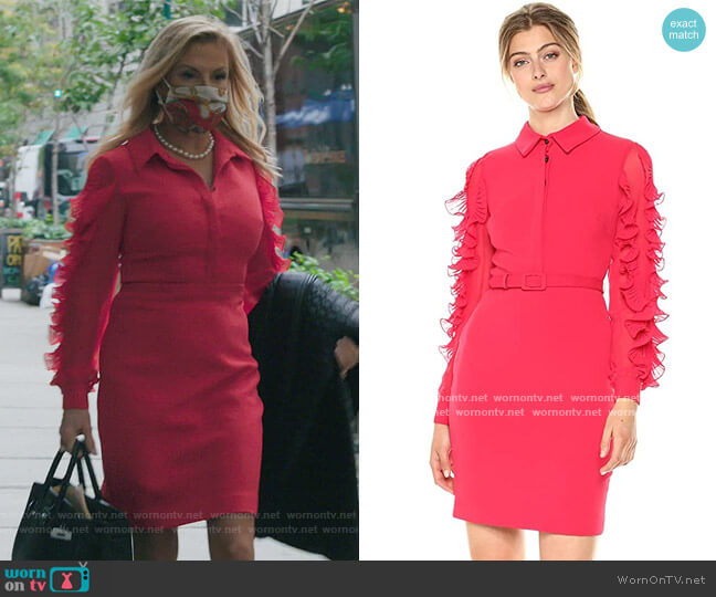 Long Sleeved Runway Cocktail Dress by Badgley Mischka worn by Ramona Singer  on The Real Housewives of New York City