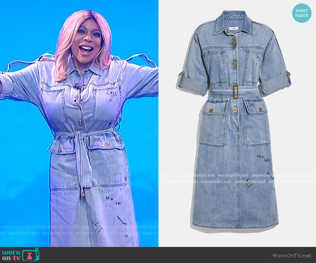 Denim Dress by Coach worn by Wendy Williams  on The Wendy Williams Show