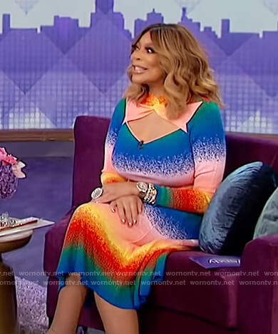 Wendy's rainbow stripe cut out dress on The Wendy Williams Show