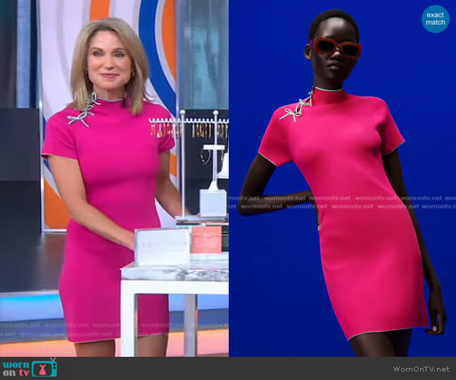 Knit Dress with Bows by Zara worn by Amy Robach  on Good Morning America
