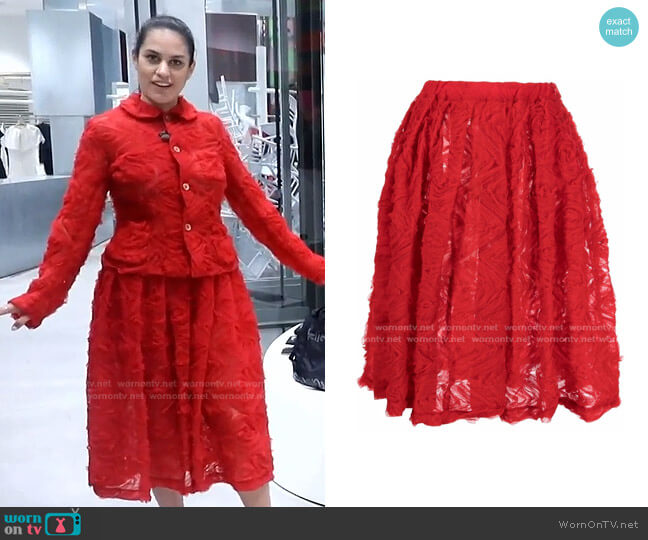 Tulle-Appliqué Pleated Skirt by Comme Des Garçons Girl worn by Donna Farizan  on Today