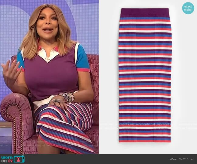 Ribbed Midi Tub Skirt by Victor Glemaud worn by Wendy Williams  on The Wendy Williams Show