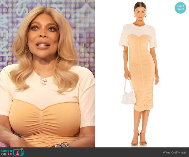 Charleigh Rayon Ruche Dress by Jonathan Simkhai worn by Wendy Williams  on The Wendy Williams Show