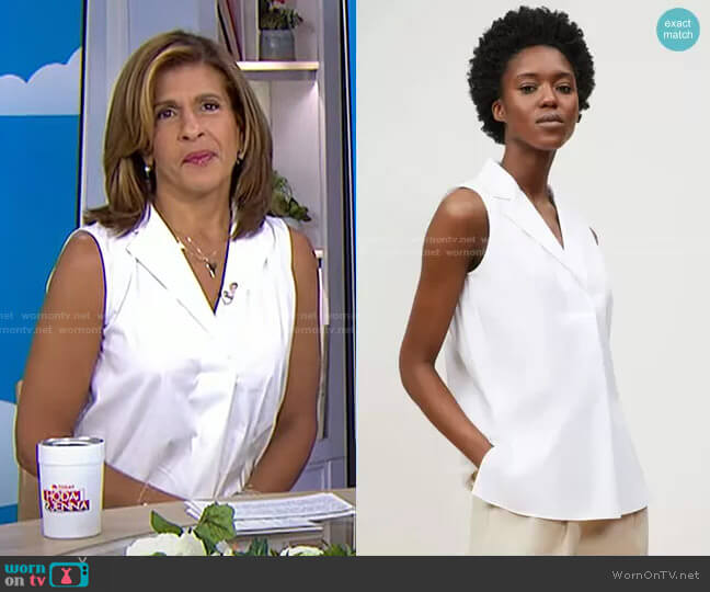Siona Sleeveless Collared Shirt by Lafayette 148 New York worn by Hoda Kotb  on Today