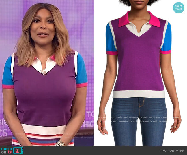 Colorblock Polo T-Shirt by Victor Glemaud worn by Wendy Williams  on The Wendy Williams Show