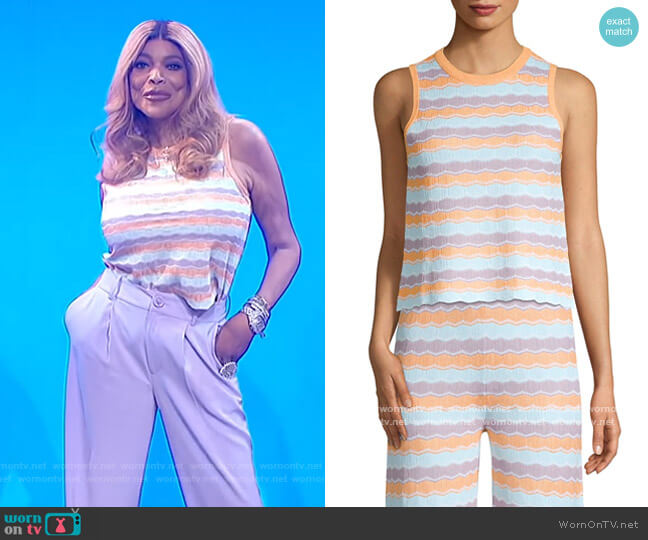 Antonella Stripe Knit Tank by Alice + Olivia worn by Wendy Williams  on The Wendy Williams Show