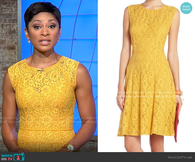 Bcbgmaxazria Sleeveless Lace Dress worn by Jericka Duncan  on CBS Mornings