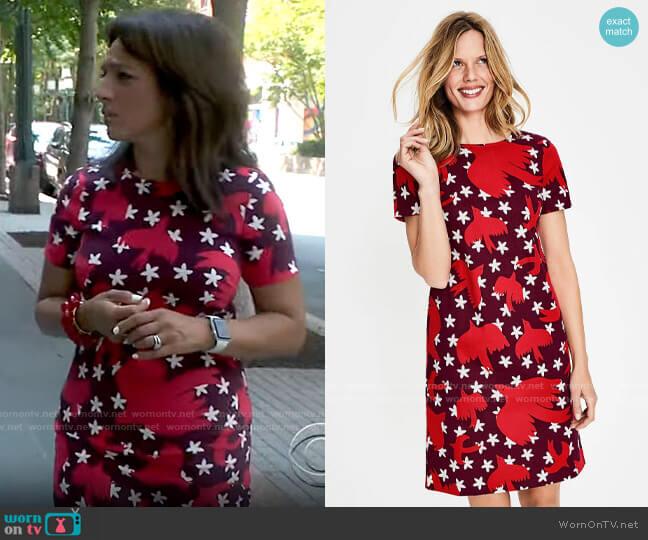 Boden Easy Shift Dress in Mulled Wine Starry Bird worn by Michelle Miller  on CBS Mornings