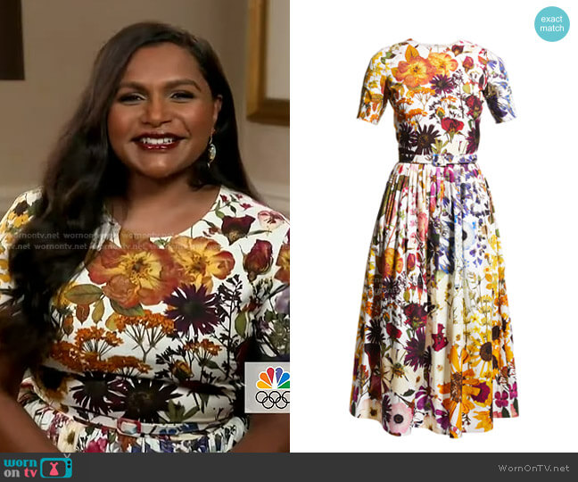Ombre Pressed Flower-Print Fit-&-Flare Dress by Oscar de la Renta worn by Mindy Kaling on Today