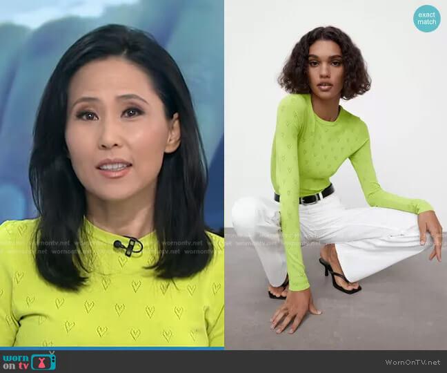 Knit Heat Sweater by Zara worn by Vicky Nguyen  on Today