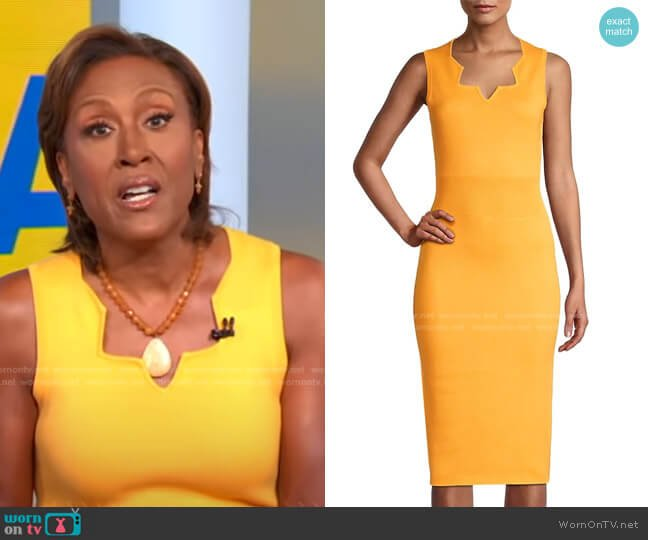 Cotton-Cashmere Sheath Dress by Victor Glemaud worn by Robin Roberts  on Good Morning America