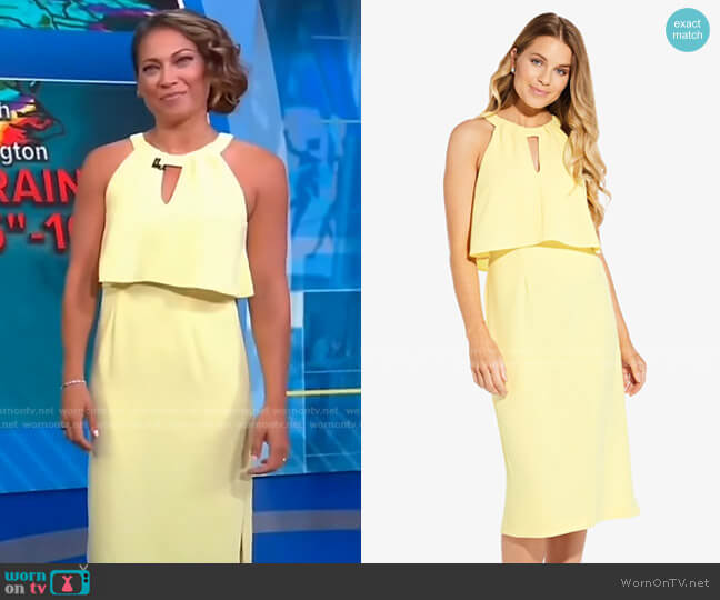 Sleeveless Sheath Dress with Cutout Detail by Adrianna Papell worn by Ginger Zee  on Good Morning America