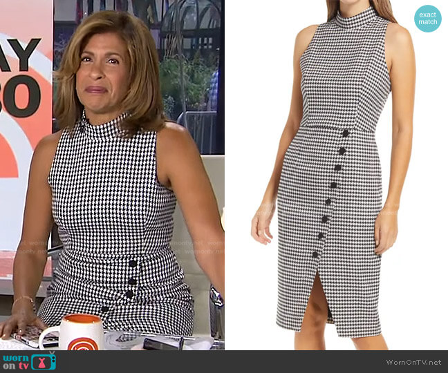 Sofie Dress in Classic Chic by Black Halo worn by Hoda Kotb  on Today