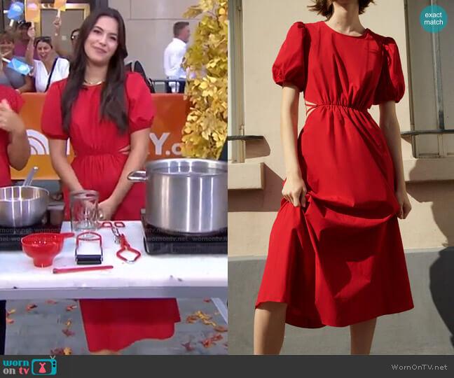 Cut Out Poplin Dress by Zara worn by Elena Besser on GMA