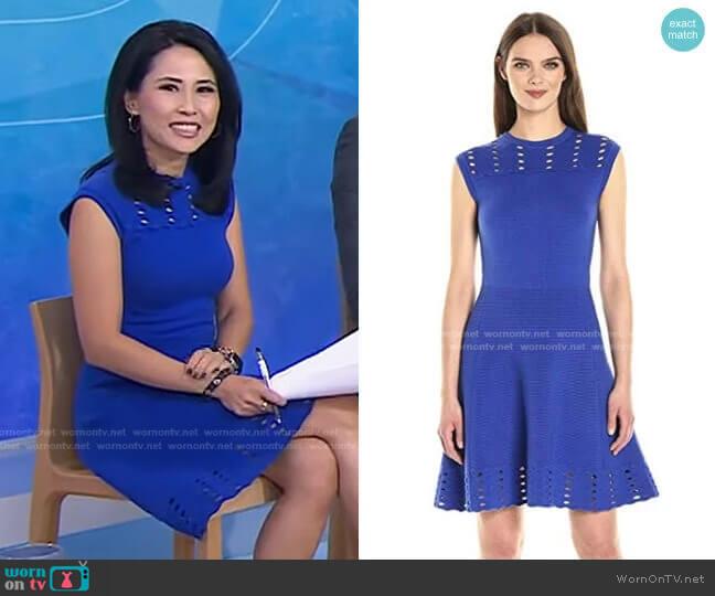Zaralie Jacquard Panel Skater Dress by Ted Baker worn by Vicky Nguyen  on Today