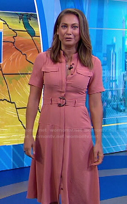 Ginger's pink belted button front dress on Good Morning America