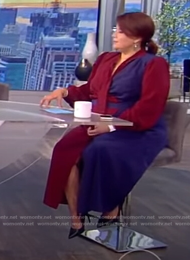 Ana's colorblock tie neck dress on The View