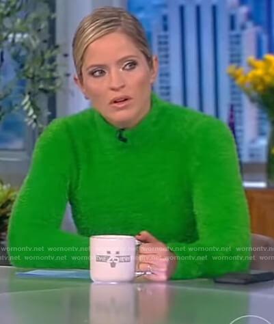 Sara's green fuzzy turtleneck sweater on The View